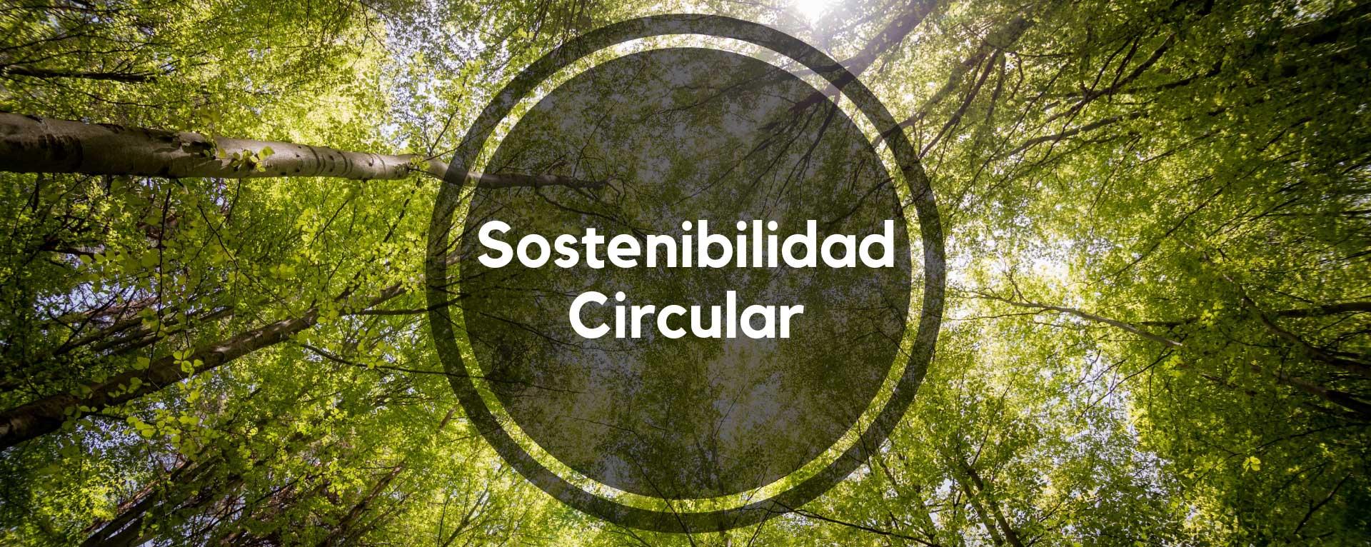 Sostenibilidad Circular