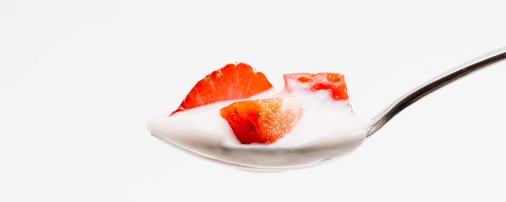 yogur probioticos